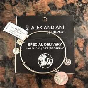 Alex and Ani silver Special Delivery bracelet